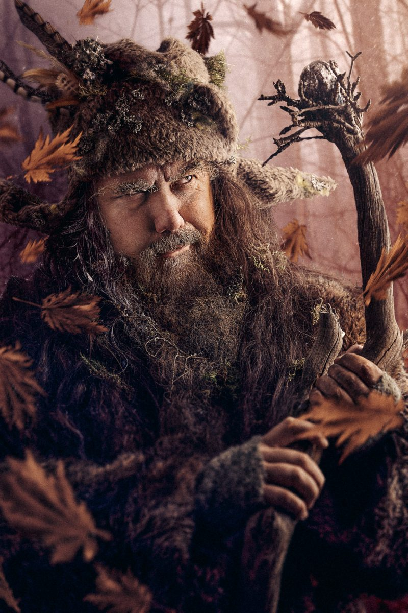 Radagast the Brown, Lord of the Rings
