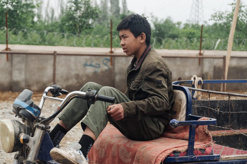 silk road china animal market young boy
