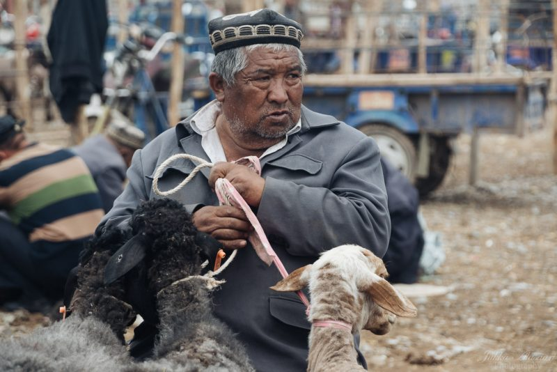 silk road china animal market man with his goats