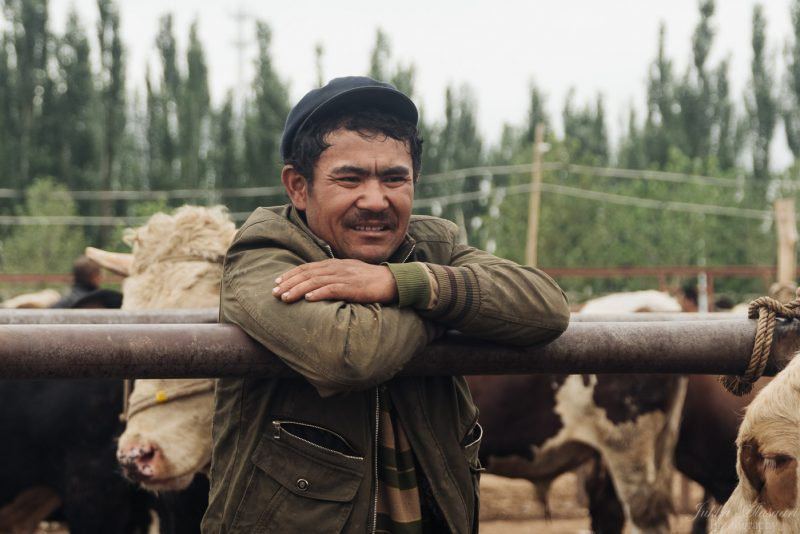 silk road china animal market farmer