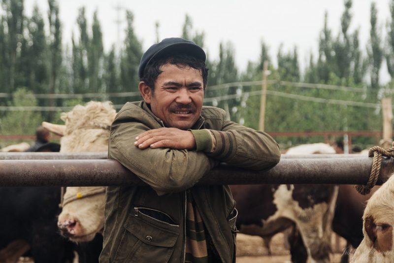 silk road china animal market farmer